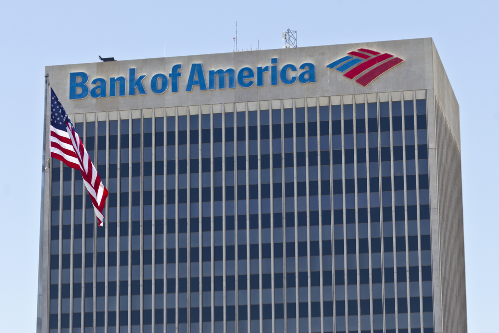 an overview of the history of the bank of america Bank of america merrill lynch serves the needs of individual, corporate, institutional and government clients in over 30 cities across europe, the middle east and africa.